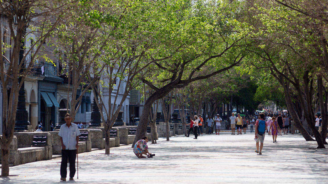 Cubans walking along Paseo del Prado in Havana