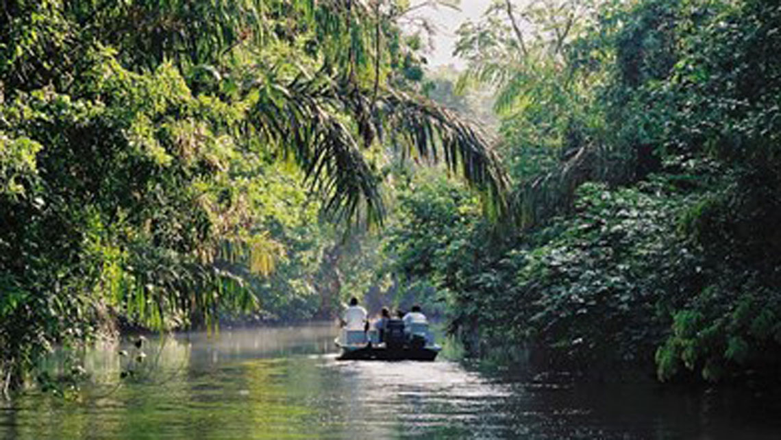 Tortuguera National Park
