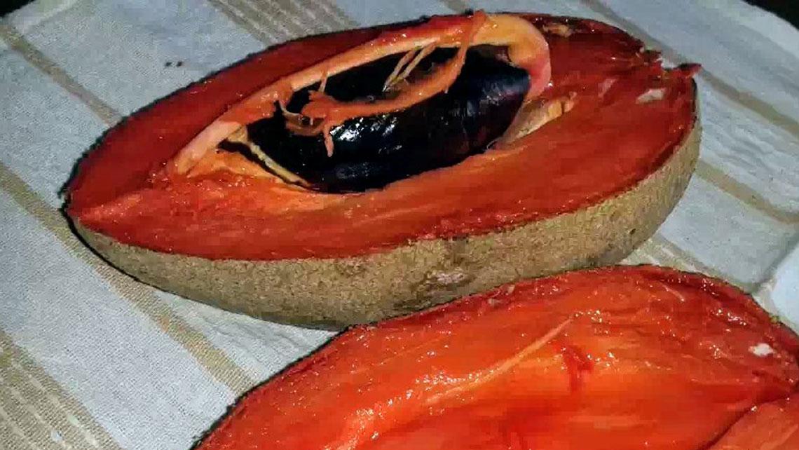 A ripe mamey cut in halves