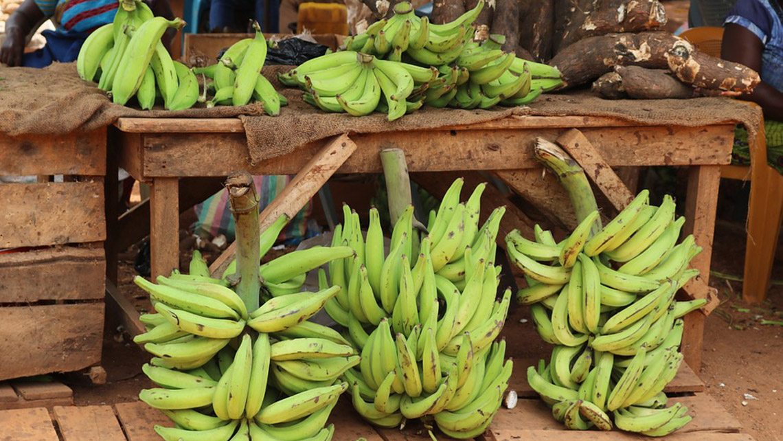 Bunch of plantain in a selling point
