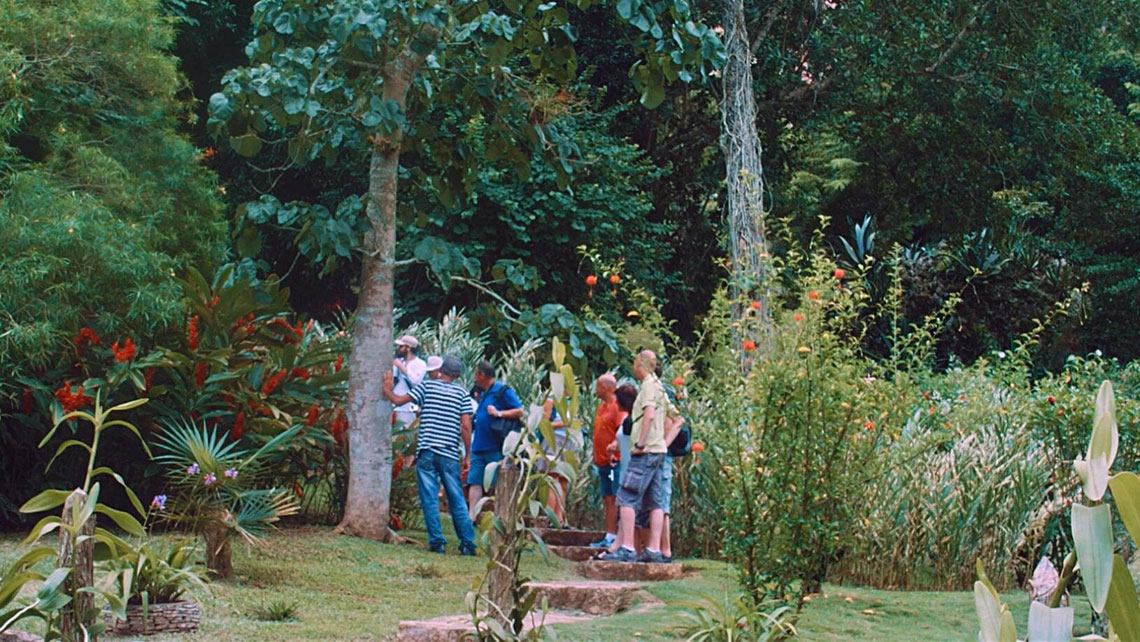 Visitors in Soroa's colourful Orchid gardens