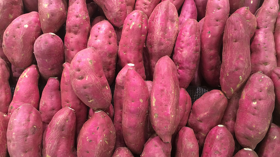 Cuba: A Sweet Potato Paradise! Seven Fun Facts