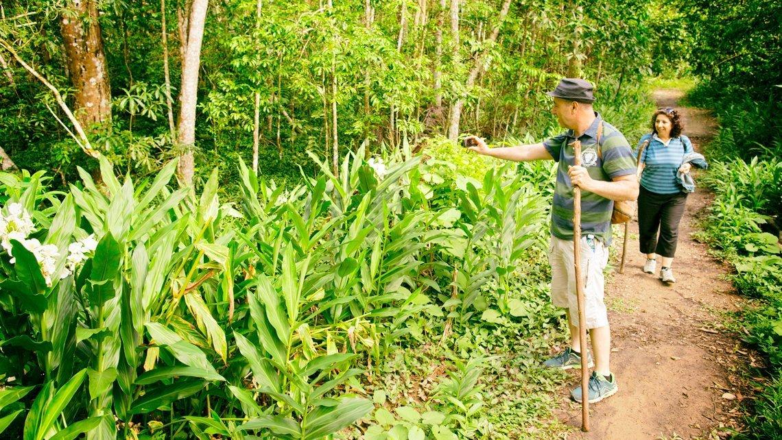 Turist walking in Desembarco del Granma National Park