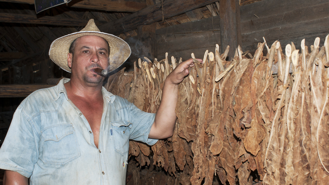 Ten fun facts about Cuban cigars